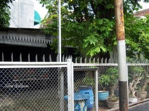 Rumah masa kecil Nh Dini di Sekayu, Semarang. Foto: SIlvia Galikano.