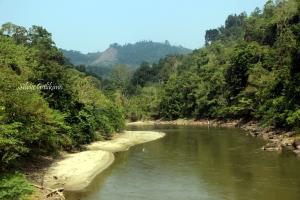 Sungai Koro, sebutan penduduk setempat untuk Sungai Lariang, sungai terpanjang di Pulau Sulawesi. Foto: Silvia Galikano