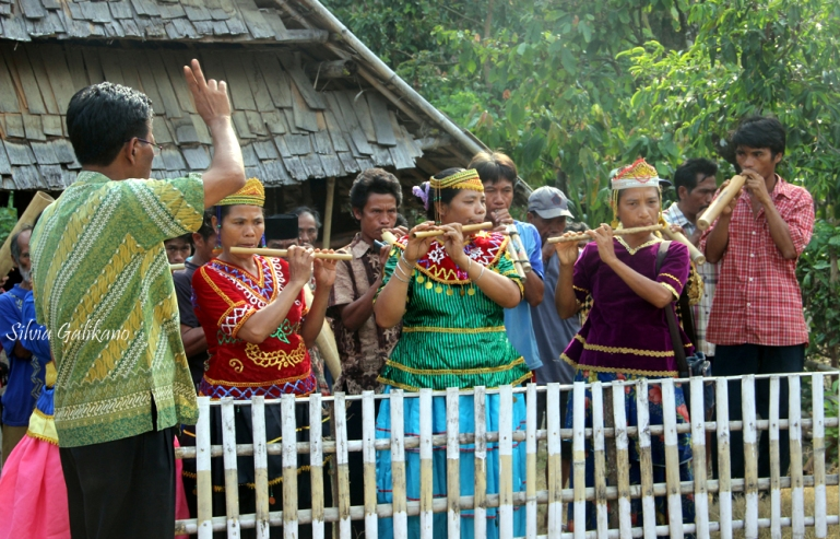 Musik bambu, Porelea, Pipikoro, Sigi, Sulawesi Tengah