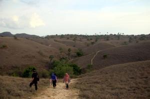 Ada empat jalur disediakan bagi wisatawan, dari jalur adventure sejauh 9 km hingga jalur pendek 1 km