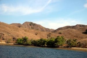Bukit sabana berwarna cokelat saat musim panas (1)