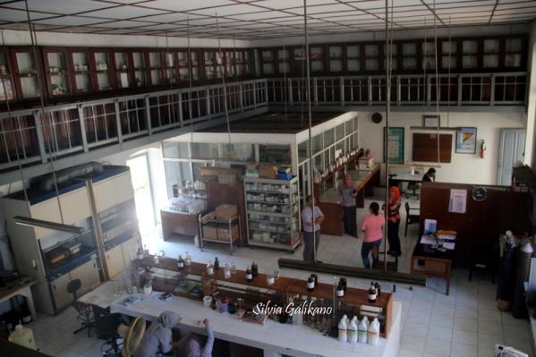 laboratorium-p3gi-1
