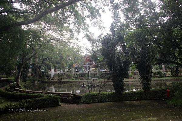 Kolam di halaman utara Bumi Siliwangi, Asalnya kolam ini memanjang ke halaman selatan dan dihuni angsa hitam, Foto Silvia Galikano