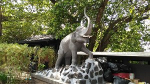 hotel candi baru, gajahmungkur, gajah mungkur, semarang